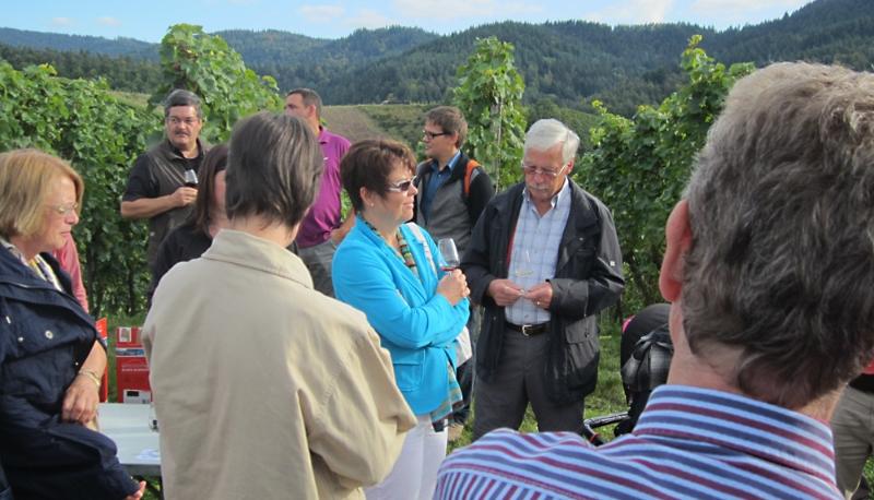 Weinwanderung der CDU durch das Rebland, September 2012