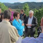 Weinwanderung mit der CDU Rebland